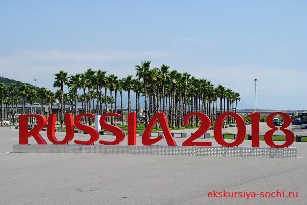 Начало экскурсии олимпийский парк