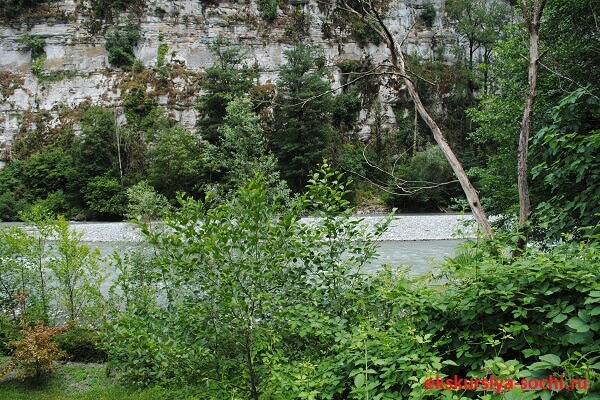 Река Мзымта Сочи
