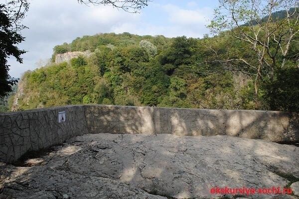Смотровая площадка в Тисо-самшитовой роще